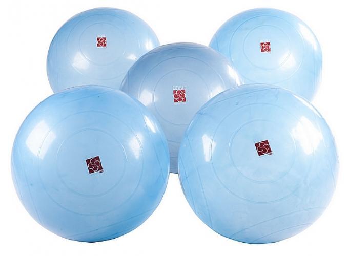 Productafbeelding voor 'BOSU® Ballast Ball (5 pack)'