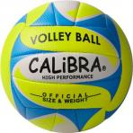 Calibra_Beachvolleybal_Alegre_2
