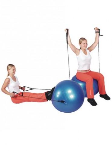 Productafbeelding voor 'Gymbal COMFORT bal met Handgrepen'